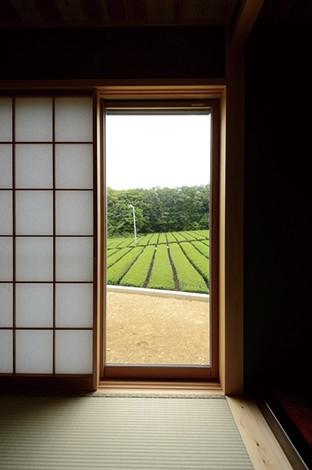 Mulberry House 桑原建設【和風、自然素材、省エネ】家中のどの部屋からも茶畑が見えるロケーションが羨ましい