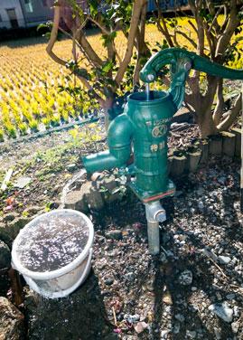 ホームプラザ大東|いざという時に、地域と人のためになれば…と、防災用の井戸も設置。あえて昔ながらの手押しポンプに