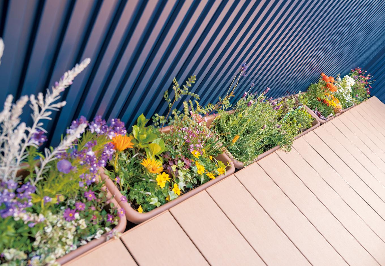 三和建設【デザイン住宅、子育て、間取り】プランター用のスペースでガーデニングや家庭菜園を
