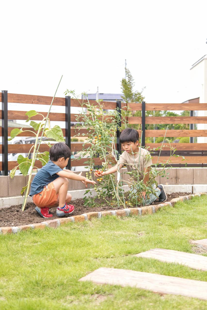 """庭の一角につくった自家菜園では、パパとママが四季折々の野菜を育て、子どもたちが収穫のお手伝い。芝生の庭にはバッタやカエル、カニたちが時々遊びにやってきて、子どもたちも大喜び。今まで住んできた建売住宅や借家では絶対に体験できなかった""""自然を身近に感じる暮らし""""を存分に楽しんでいる。"""