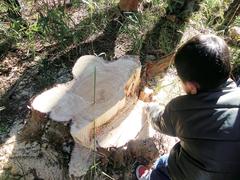 ウッドライフアドバイザーに学ぶ  『山からはじめる木の家づくり』