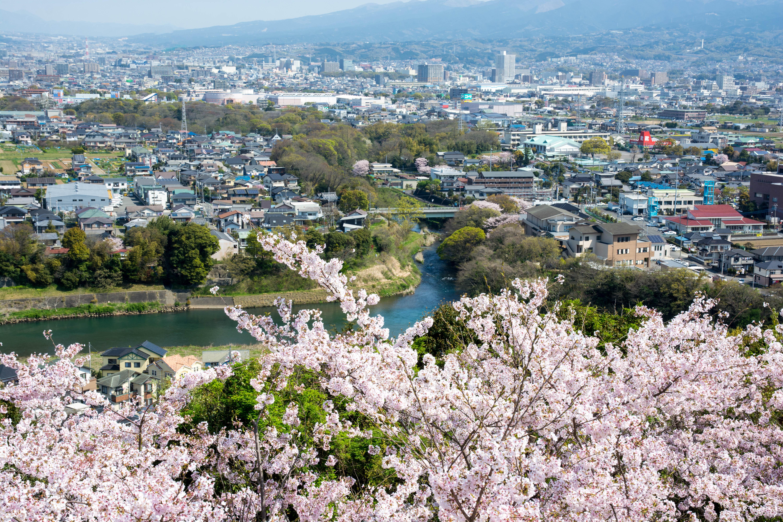 本城山からは町を一望することができる