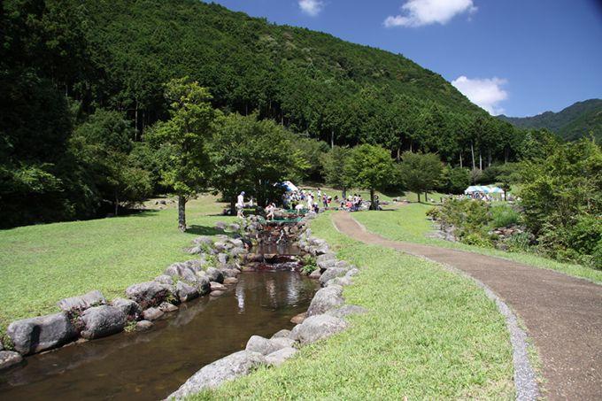 自然とふれあうことができる「水と緑の杜公園」(写真提供:長泉町)