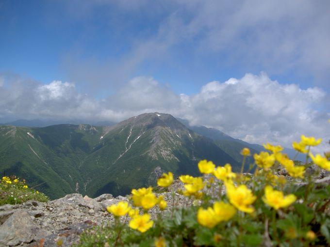 聖岳から赤石岳を望む(写真提供:静岡市)