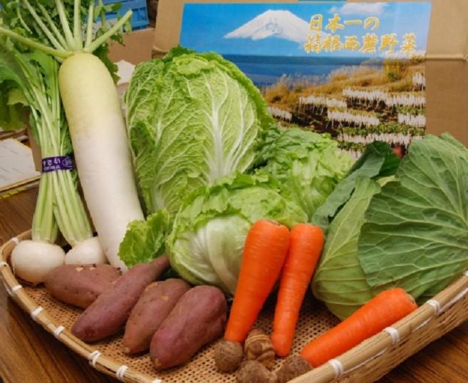 山が育む恵み、箱根西麓三島野菜