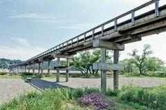 大井川に架かる世界最長の木造橋「蓬莱橋」(写真提供:島田市)