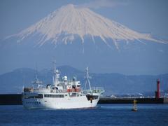 焼津港から望む富士山(写真提供:焼津市)