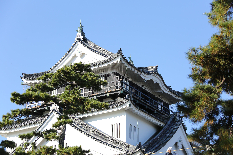 日本100名城に選定された岡崎城の天守閣(写真提供:岡崎市)
