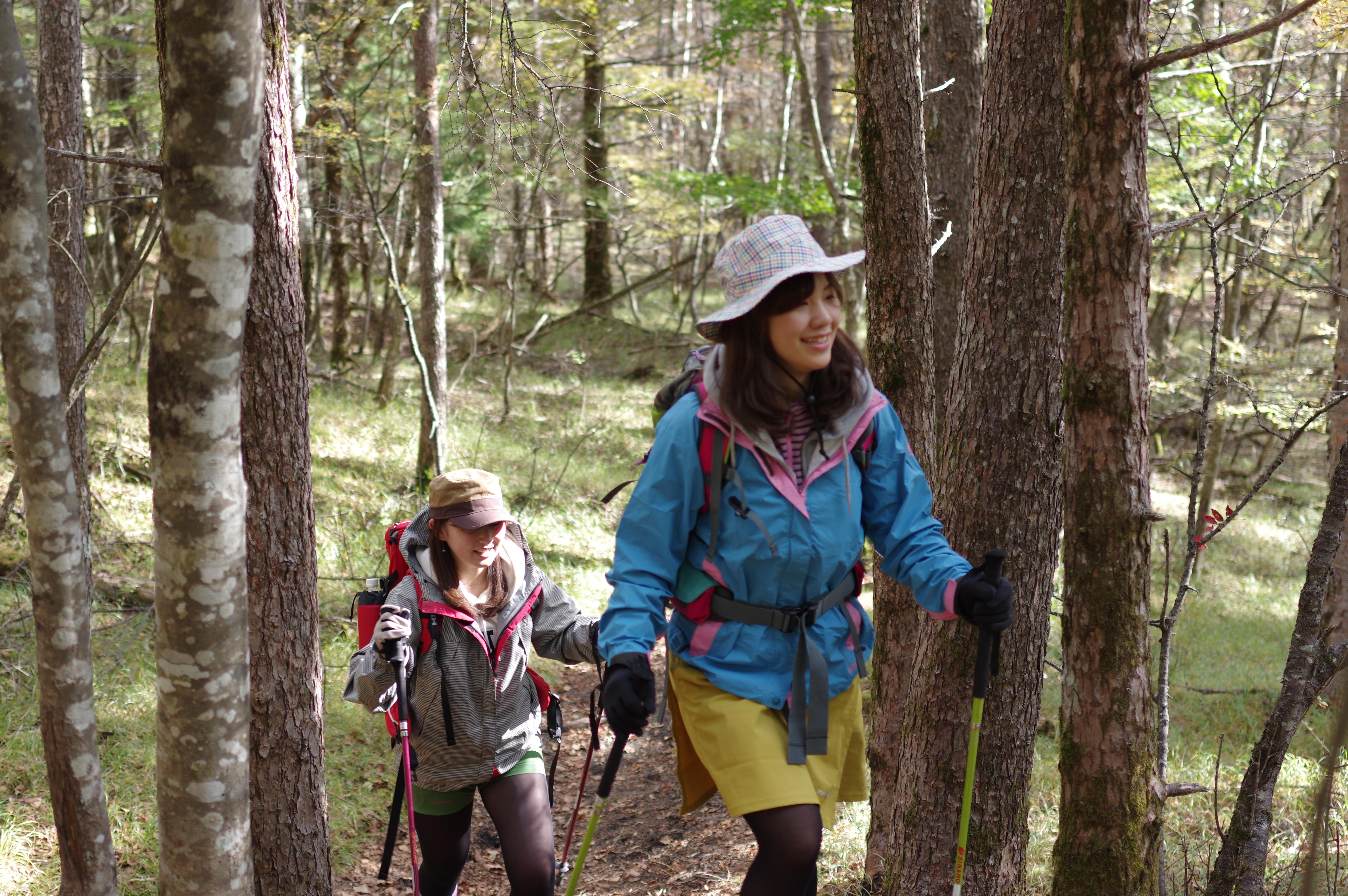 休養林ハイキング