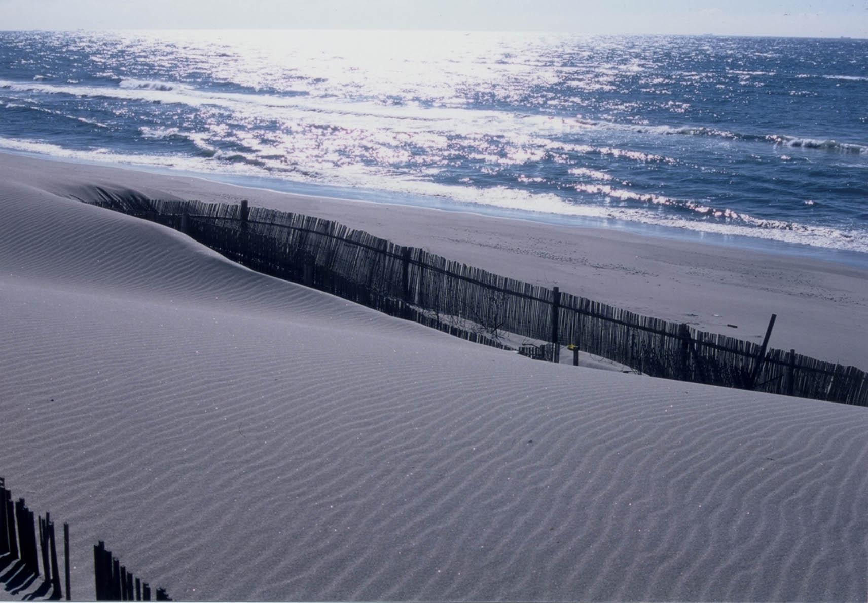 遠州の空っ風が創り出す浜岡砂丘
