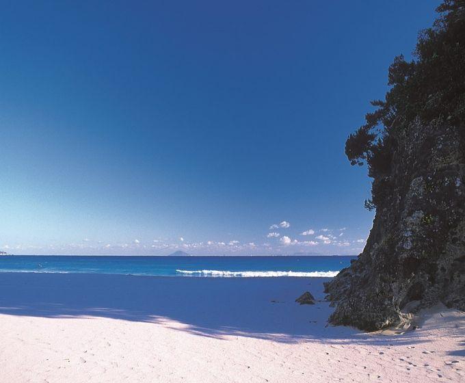 白砂が美しい吉佐美大浜(写真提供:下田市)