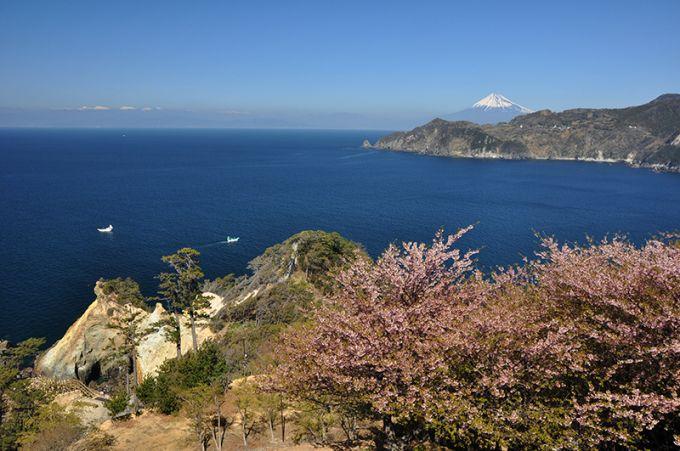 富士山を望む景観(写真提供:西伊豆町)