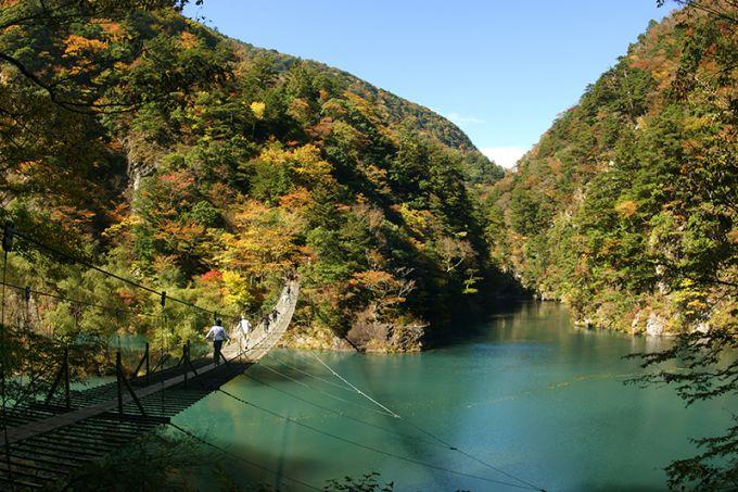 寸又峡夢の吊橋(写真提供:川根本町)