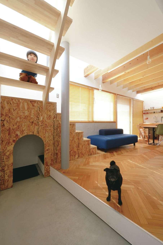MABUCHI【デザイン住宅、狭小住宅、間取り】土間続きの階段下には愛犬の部屋がある。壁に用いたOSB合板がヘリンボーンの床とベストマッチ