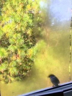 窓の役割~寒い時期こそ今一度復習を~のイメージ