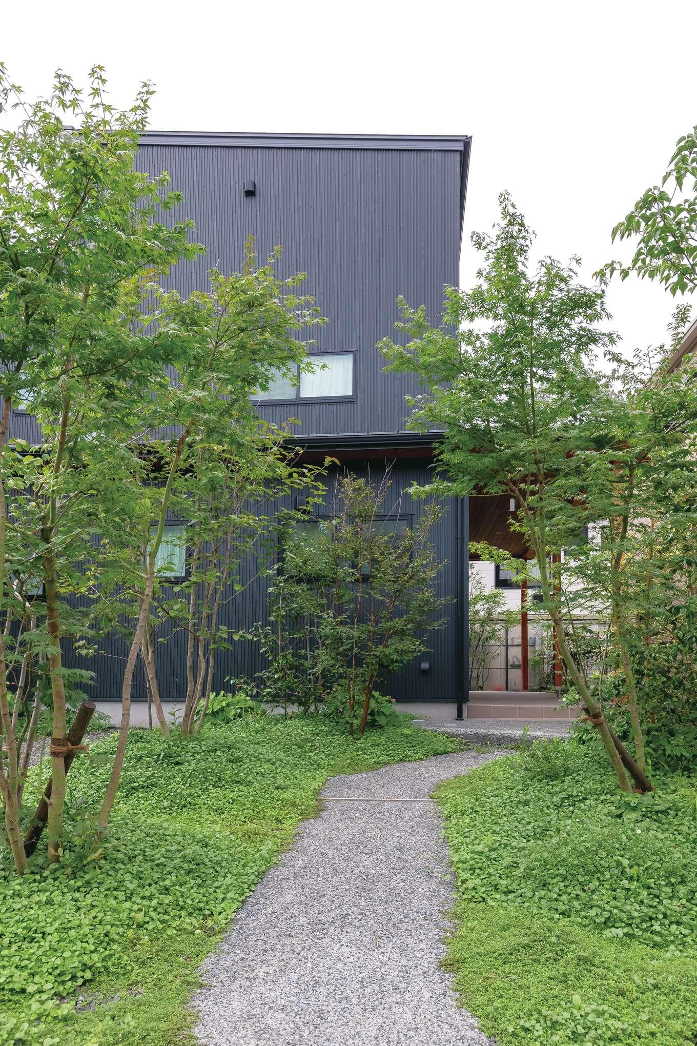 フジモクの家(富士木材)【デザイン住宅、子育て、自然素材】木々のささやきが聞こえてきそうな美しいアプローチも『フジモク』の得意とするところ。緩やかな弧を描く小径を歩くたびに心が躍る