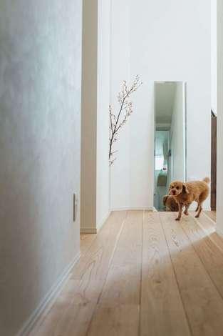 フジモクの家(富士木材)|洗面室から玄関方向を見通す。正面の壁に花瓶を置くスペースを用意