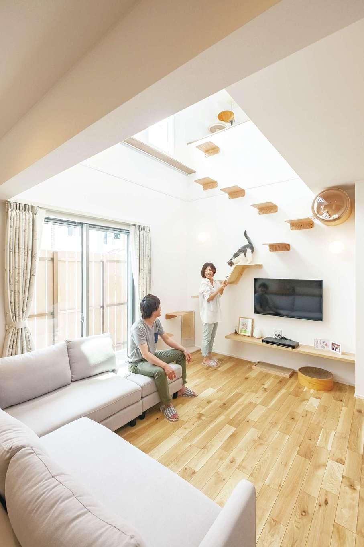 静鉄ホームズ【デザイン住宅、間取り、ペット】キャットステップの先は寝室と2階ホールの2WAY。掃き出し窓の外にもフェンスで囲った猫ちゃんの外遊びスペースがある
