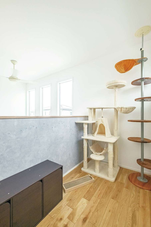 静鉄ホームズ【デザイン住宅、間取り、ペット】吹抜け上に猫ちゃんの居場所になるキャットルームを設けた