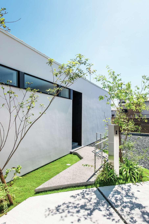 インフィルプラス【デザイン住宅、高級住宅、平屋】外観と調和したアプローチ。白い外壁に緑が映える