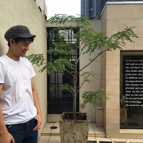 早稲田大学 教育学部の在学生