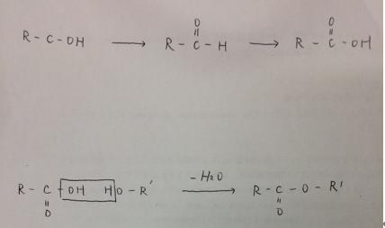 化学分野の脂肪族の勉強法