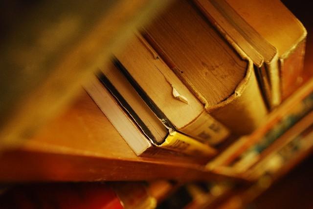 生物の参考書は1冊を使う