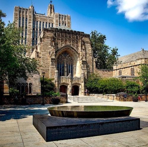 Yale university 1604157 1280%e3%81%ae%e3%82%b3%e3%83%92%e3%82%9a%e3%83%bc min