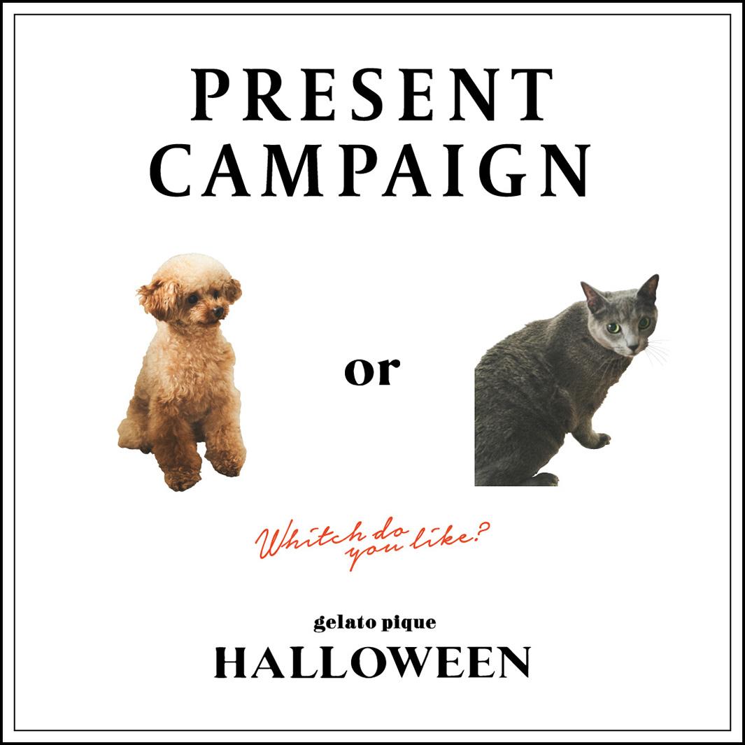「GELATO PIQUE HALLOWEEN Dod or Cat」(提供写真)