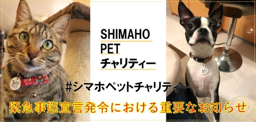 保護 犬 譲渡 会 埼玉