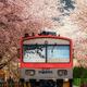 【田園都市線直結】「電車とバスの博物館」雨でも楽しめる!