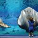 雨でも寒くても親子で遊べる「品川水族館アクアスタジアム」