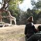 関東のおすすめ動物園15選!ランキング上位から穴場まで!