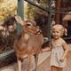 【山梨県】観光におすすめなコンパクトだけど動物が充実の万力公園!