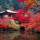 【京都】今が旬の嵐山へ子連れでおでかけ!紅葉&周辺スポット3選