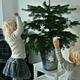 初心者でも簡単!どんぐりと松ぼっくりでクリスマスツリーやリースを手作り