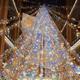 2014年クリスマス!綺麗なイルミネーションイベント2選|埼玉