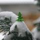 まだ間に合う!クリスマスツリー&リースの折り方|折り紙動画