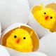 多のう胞性卵巣症候群には食生活の改善が大事?|専門家の見解
