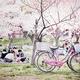 福岡でお花見におすすめな桜の名所8選!ランキング上位をご紹介!