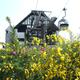 日本最大級のハーブ園|神戸|ロープウェイに乗って空中散歩!