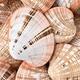 鹿児島の潮干狩りスポット3選|無料で楽しめて子どもも夢中!