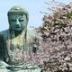 鎌倉エリアを子連れでお散歩!緑あふれるスポット4選
