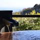 北海道十勝川温泉のお宿4選|有名な「モール泉」を家族で満喫