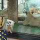 4月19日は飼育の日!イベント充実の東京の動物園&水族館4選