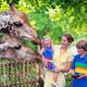横浜で無料の動物園「野毛山動物園」で一日ピクニックが楽しめる