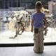 子どもの興味が湧く!神奈川県の親子で学べるおすすめ博物館4選