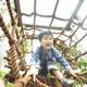 京都にあるアスレチック施設18選!自然とふれあいながら遊ぼう