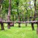 大自然を満喫!気軽に行ける、楽しめる長野のアスレチック16選!