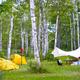 子どもと感じる初夏!自然と遊ぼうアウトドアイベント3選|関東